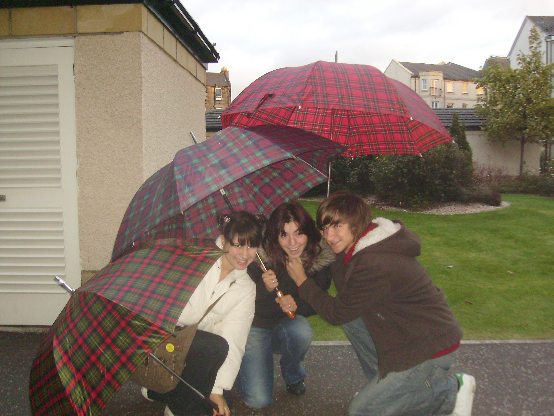 Umbrellas 018